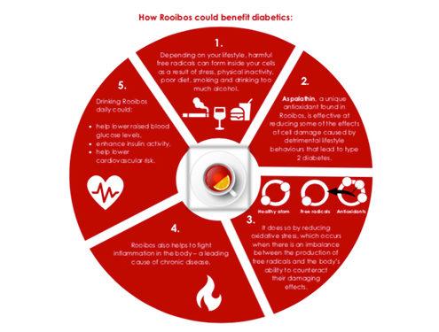 Infographic Rooibos Diabetes