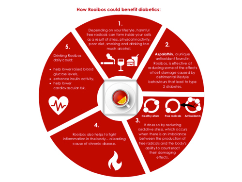 Infographic Rooibos Diabetes
