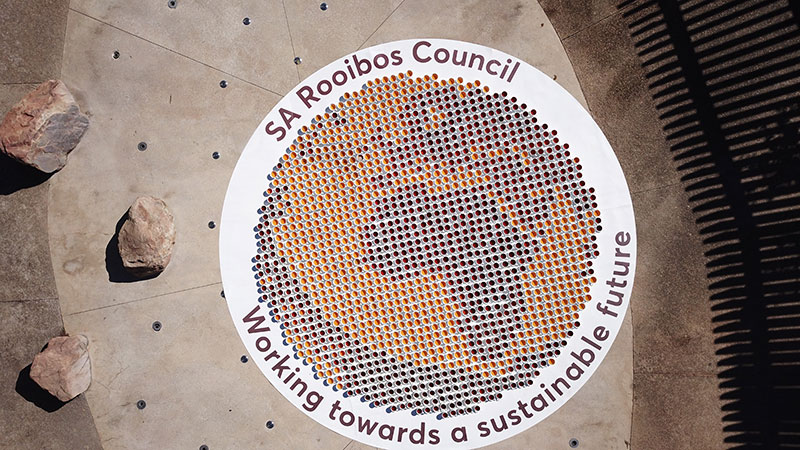 Rooiboss Art Installation